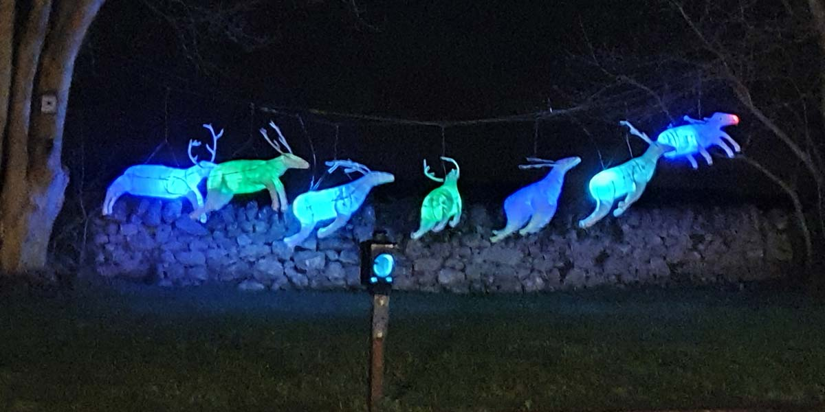 Ballyglunin Station Things To Do Christmas Family Event Galway Reindeer Lights